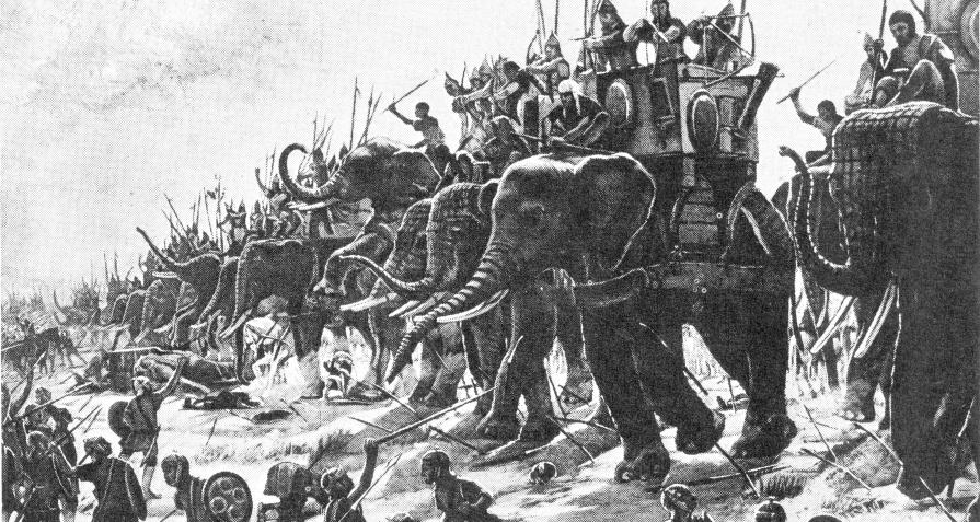 Elefantes en Zama